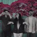 Sonorgánica: Música para el alma